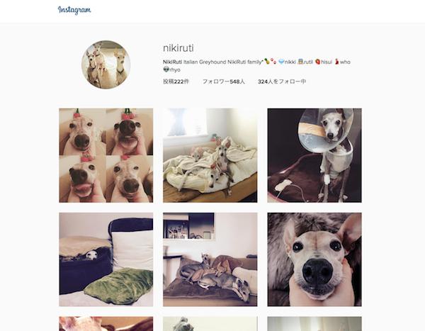 Start instagram @nikiruti